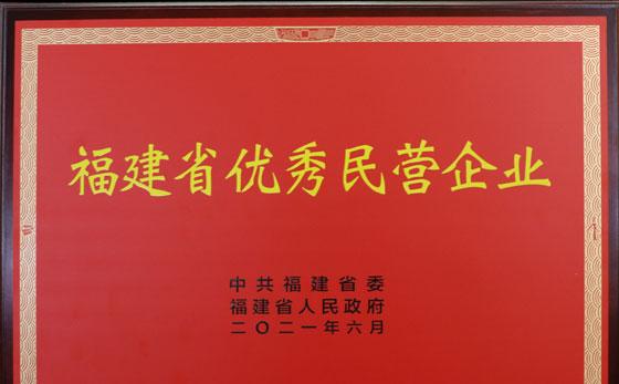 福建省优秀民营企业证书